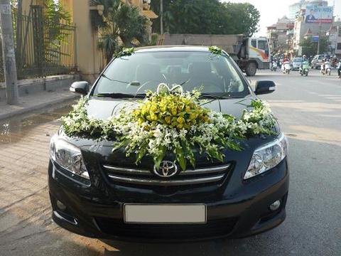 Xe cưới 4 chỗ - Toyota Altis