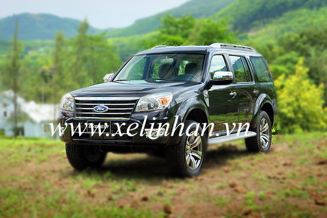 Xe 7 chỗ - Ford Everest